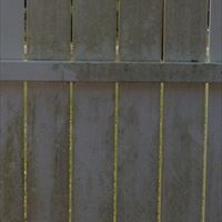 Painted Wood Fencing Before - Patriot SoftWash