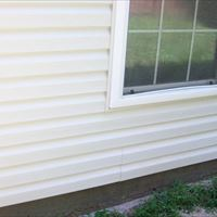 Vinyl Siding (Mold Removal - Detailed) After - Patriot SoftWash